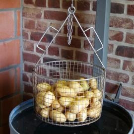 Hoe wordt de kwaliteit van aardappelen bepaald? Het onderwatergewicht